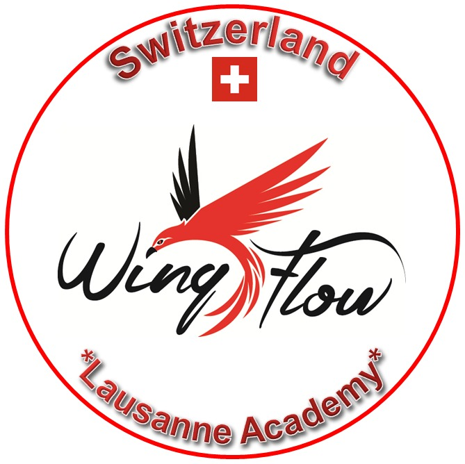 Wing Flow System Switzerland